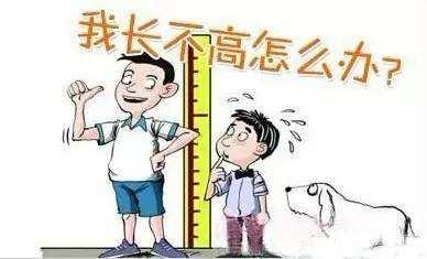 """儿童身高体重测量仪谈孩子""""矮小""""和""""晚长""""的区别"""