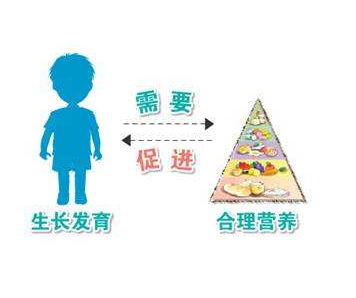 儿童生长发育测试仪可以检测出影响身体生长发育的因素,家长可以根据